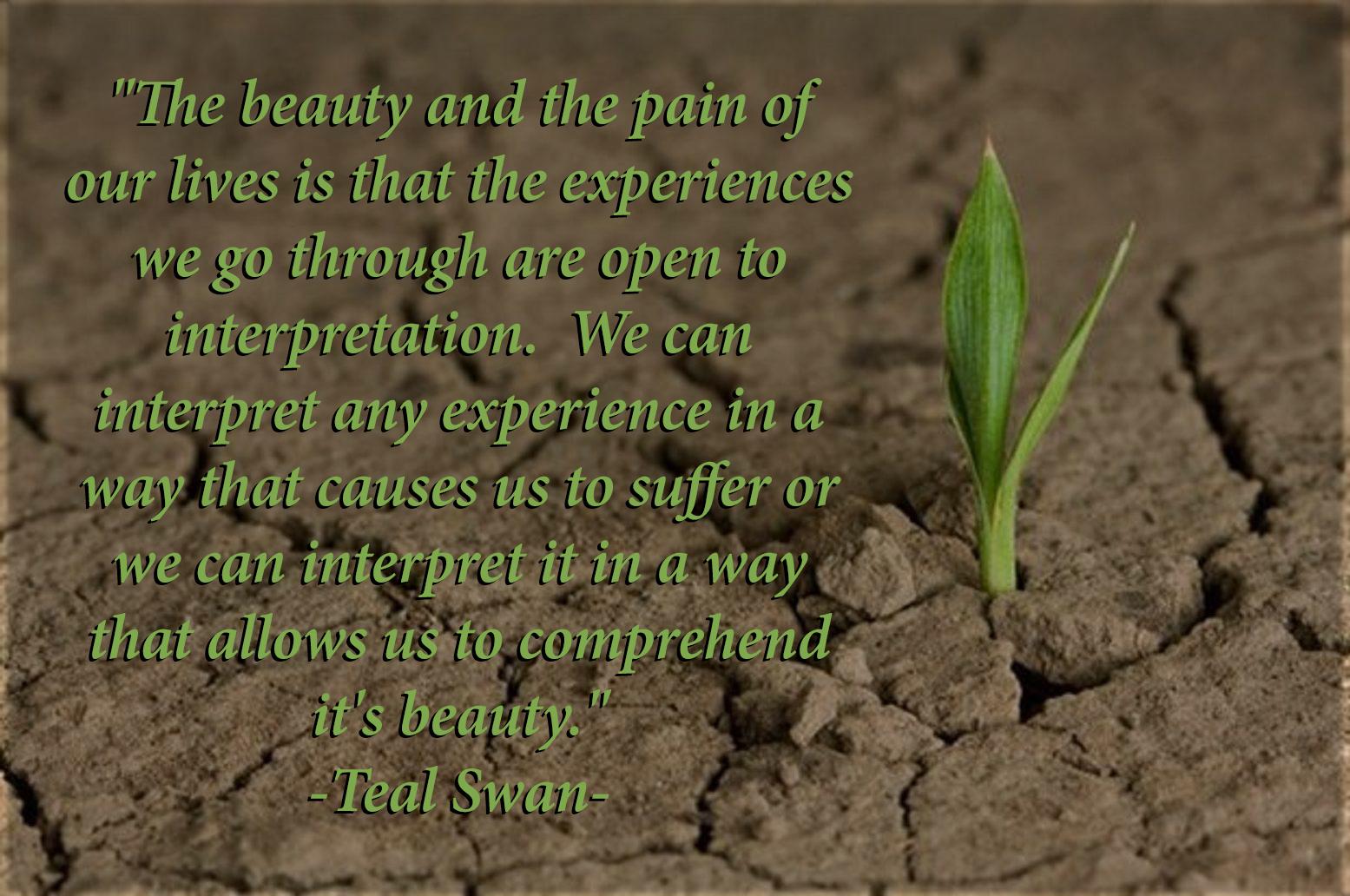 Beauty-of-Interpretation.jpg