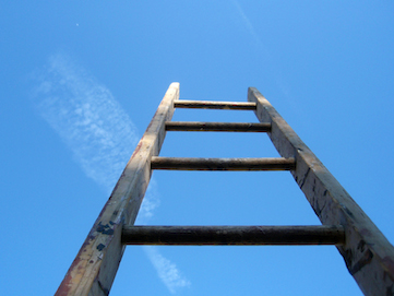 The_ladder_of_life_is_full_of_splinters_0.jpg