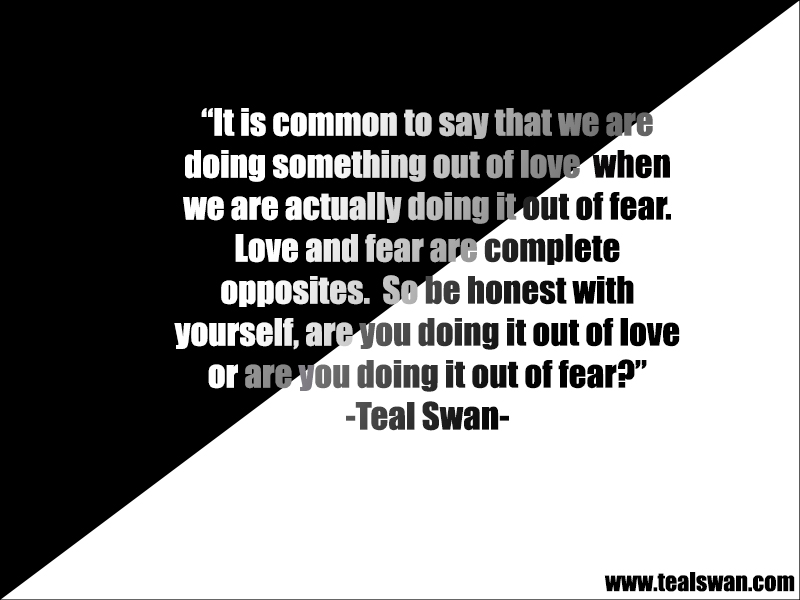 Love Or Fear Quote Blog Posts Teal Swan