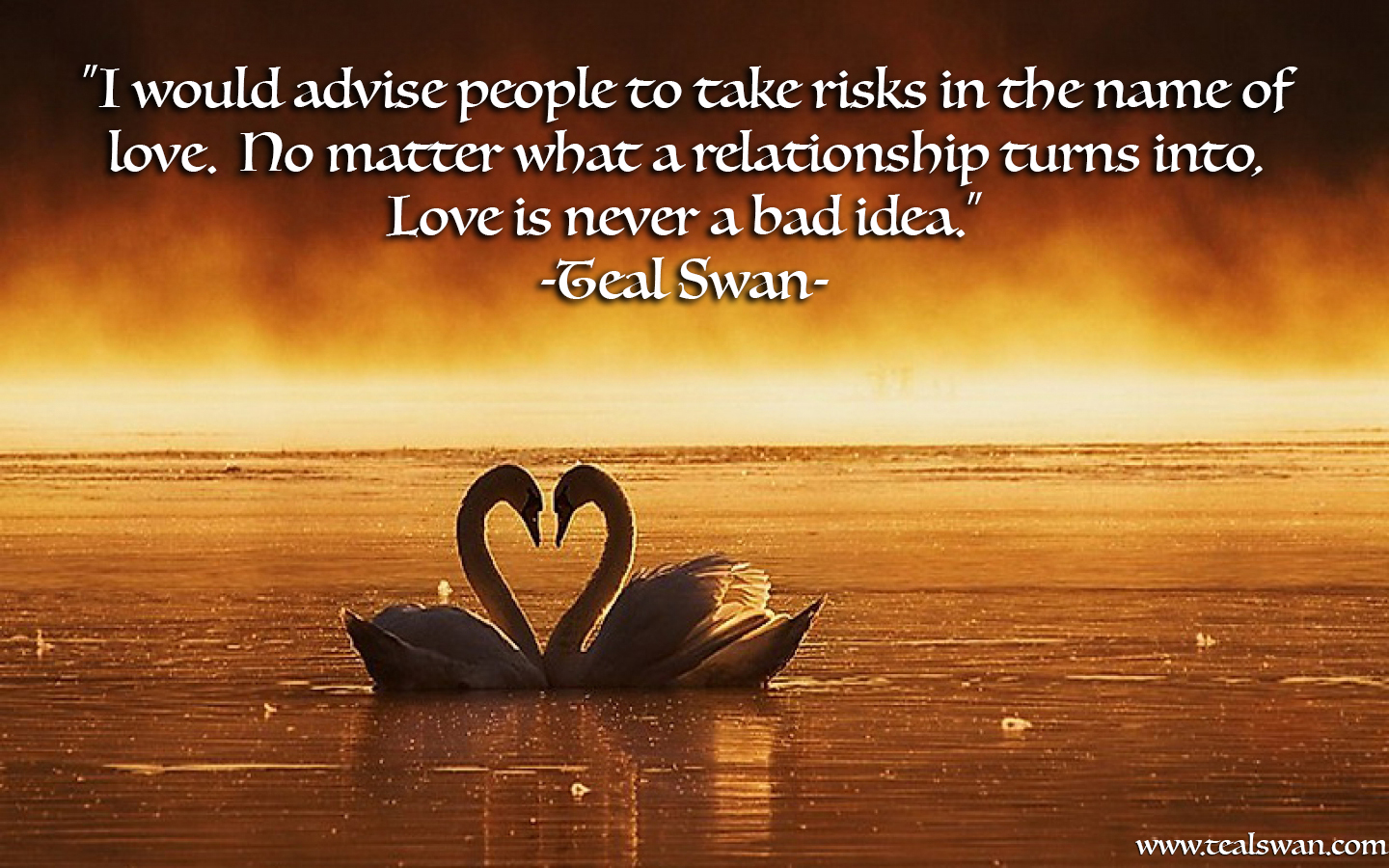 Quote On Love Love Risk Quote  Blog Posts  Teal Swan