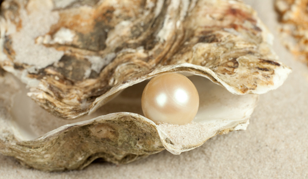 oyster-pearl-100903-02.jpg