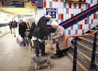 random-acts-kindness-14.jpg