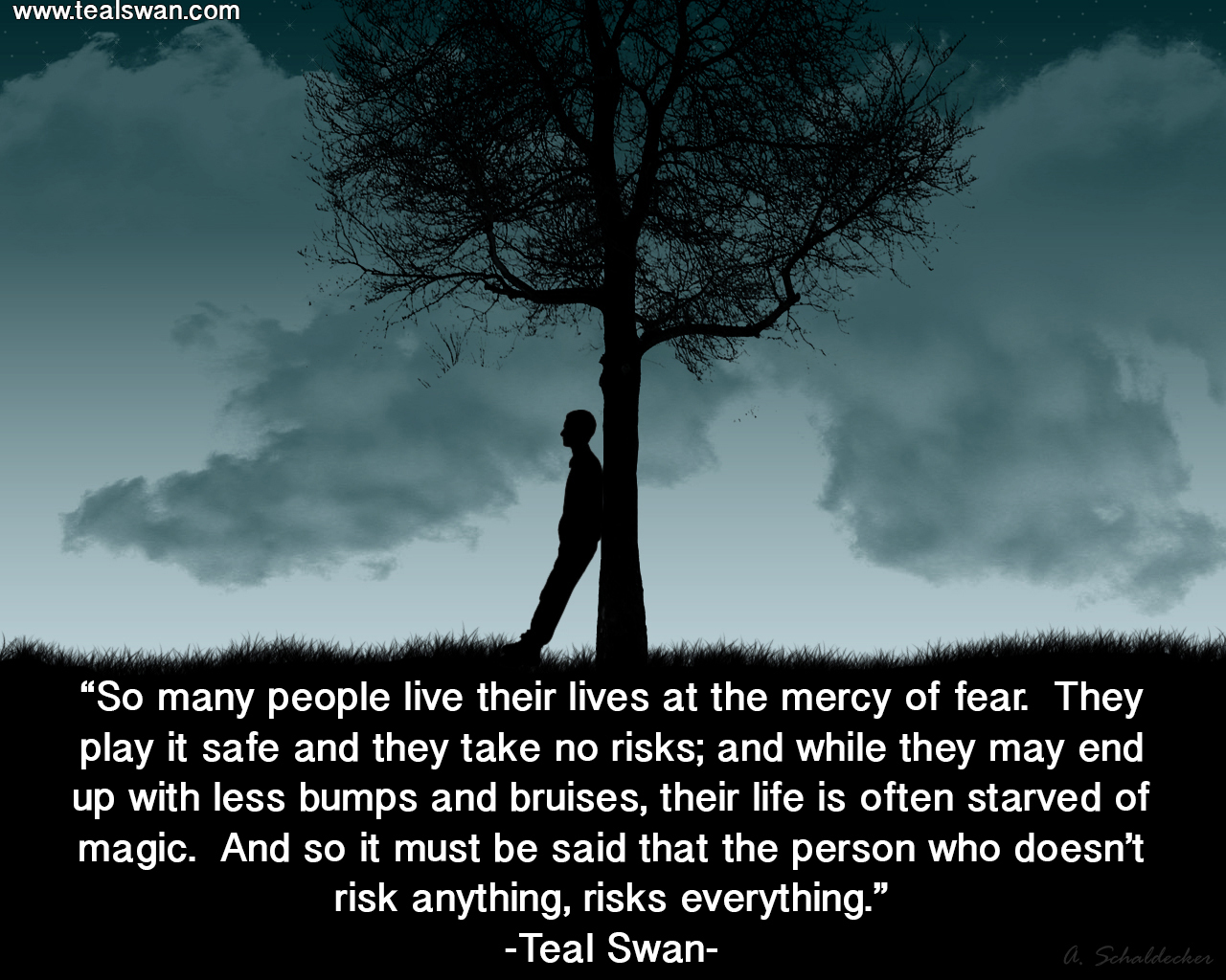 risk-quote.jpg