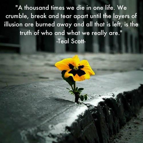 Death And Life Quote. Die In Life